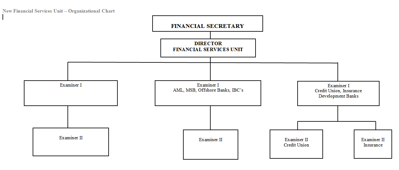Organisational Chart of the Financial Services Unit